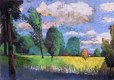 Painting - Landscape With Trees ,yellow Rape Seed Field by Martin Stankewitz