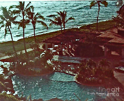 Photograph - Landscapes - Hawaii - Maui L31 by Monica C Stovall