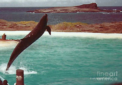 Photograph - Landscapes - Hawaii - Oahu L27 by Monica C Stovall