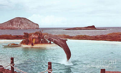 Photograph - Landscapes - Hawaii - Oahu L30 by Monica C Stovall