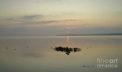 Photograph - Landscapes L8 by Monica C Stovall