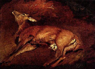 Digital Art - Landseer Sir Edwin Study Of A Dead Stag by Sir Edwin Henry Landseer