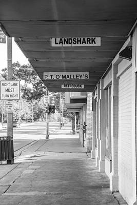 Photograph - Landshark And Pt Omalleys  by John McGraw