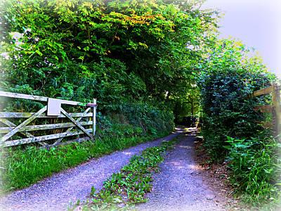Lane Near Monmouth Art Print by Andrew Read