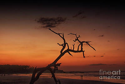 Photograph - Langosta Beach At Sunset by Bob Hislop