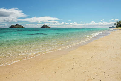 Photograph - Lanikai Beach 4 - Oahu Hawaii by Brian Harig