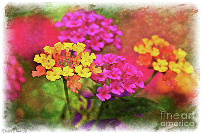 Photograph - Lantana Close View 2 Digital Effect by Debbie Portwood