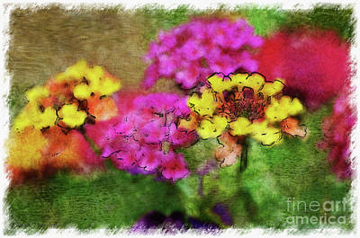 Photograph - Lantana Close View 4 With Digital Effect by Debbie Portwood