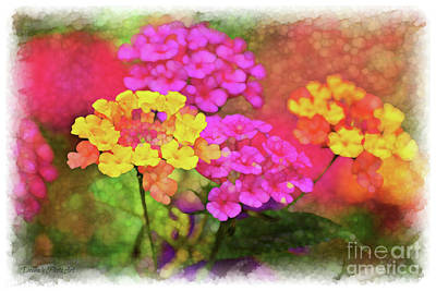 Photograph - Lantana Close View 5 With Digital Effect by Debbie Portwood