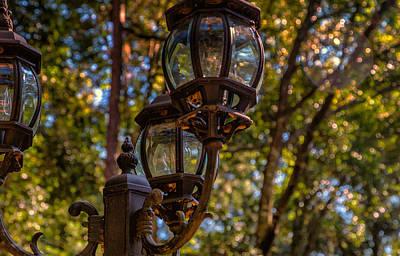 Lantern Light Art Print