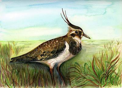 Painting - Lapwing Bird by Alison Langridge