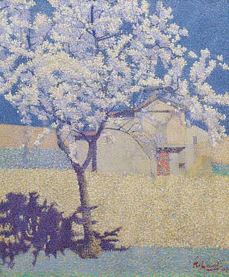 L'arbre En Fleur Art Print