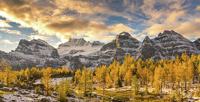 Photograph - Larch Valley Golden Dawn by Mike Reid