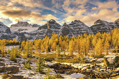 Photograph - Larch Valley Golden Larches Landscape by Mike Reid