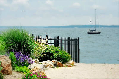 Larchmont Shore Art Print by Diana Angstadt