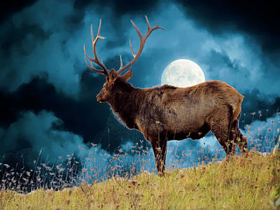 Digital Art - Large Bull Elk On Moonlite Hilltop. by Rusty R Smith