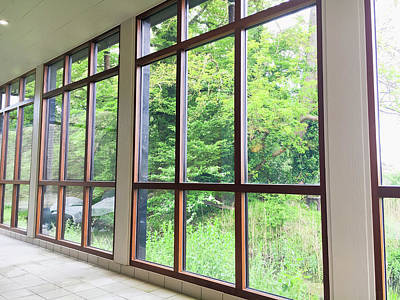 Health Resort Photograph - Large Conservatory Windows by Tom Gowanlock