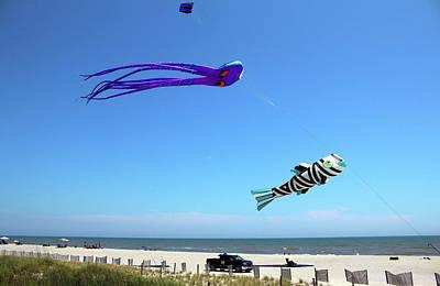 Photograph - Large Kites Over The Beach by Cynthia Guinn