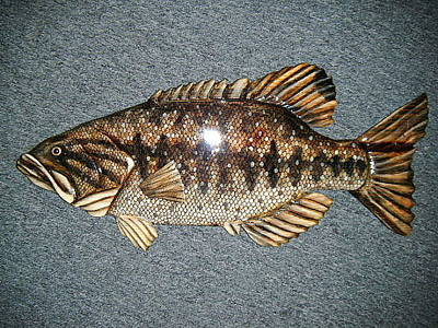 Dryriver Painting - Large Mouth Bass Number Seven by Lisa Ruggiero