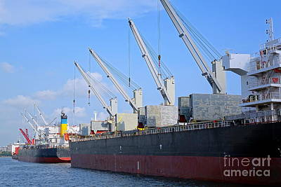 Photograph - Large Ships With Loading Cranes by Yali Shi
