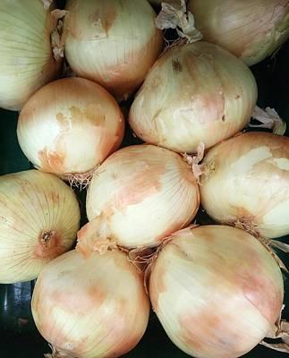 Photograph - Large White Onions by Mudiama Kammoh