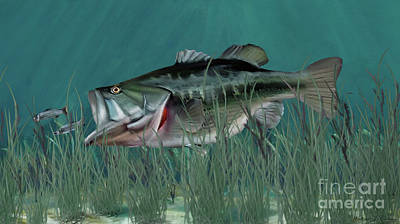 Digital Art - Largemouth Bass by Walter Colvin