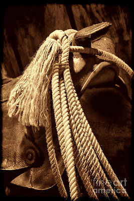 Photograph - Lariat On A Saddle by American West Legend By Olivier Le Queinec