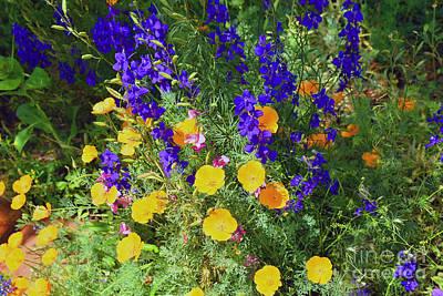 Larkspur And Primrose Garden Art Print