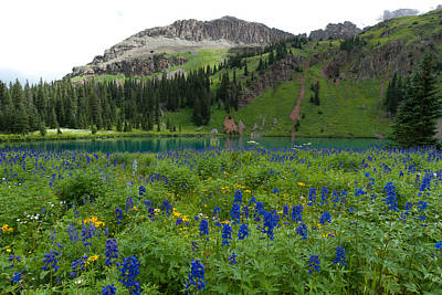 Photograph - Larkspur Meadow And Blue Lake by Cascade Colors