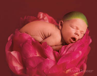 Pink Flower Photograph - Lars In Peony by Anne Geddes