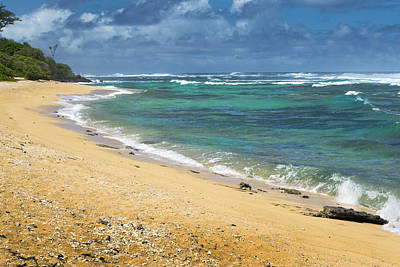 Photograph - Larsons Beach Kauai by Frank Wilson