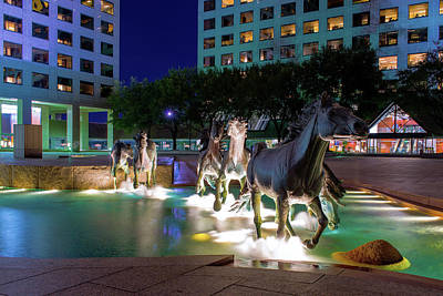 Photograph - Las Colinas Mustangs 72016 by Rospotte Photography
