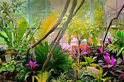 Photograph - Lasdon Conservatory by Diana Angstadt