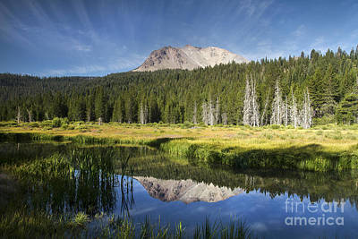 Photograph - Lassen Reflections by Randy Wood