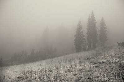 Photograph - Lassen Solitude by Kunal Mehra