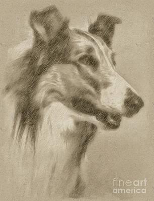 Fantasy Drawings - Lassie by Frank Falcon