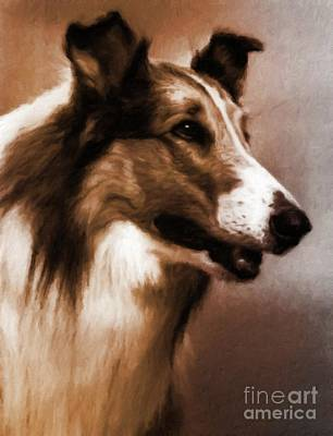Musician Royalty-Free and Rights-Managed Images - Lassie by Mary Bassett