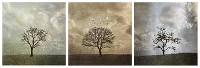Fleetwood Mac - Last Day Of Winter Triptych by Eduardo Tavares