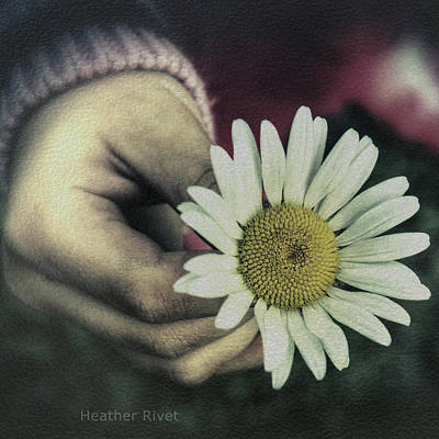 Heather Rivet Photograph - Last Days Of Summer by Heather  Rivet