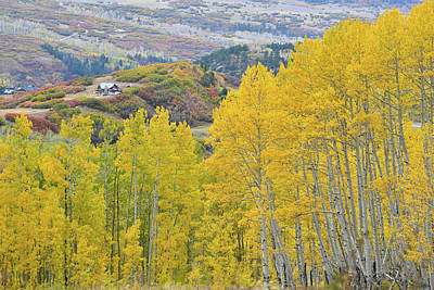Photograph - Last Dollar Road Aspen Gold Mine by Ray Mathis