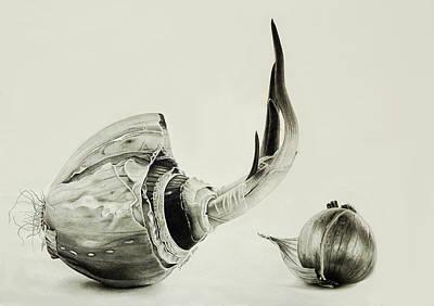 Onion Drawing - Last Effort by Dietrich Moravec