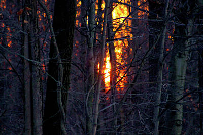 Photograph - Last Fire Before The Night by Bruce Patrick Smith