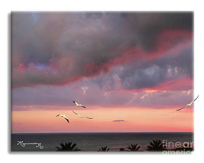 Photograph - Last Flight For The Day by Mariarosa Rockefeller