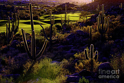 Photograph - Last Hole by Scott Kemper