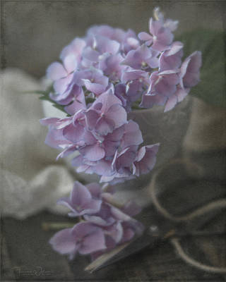 Photograph - Last Hydrangeas Of The Season by Teresa Wilson