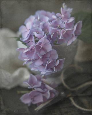 Spot Of Tea Royalty Free Images - Last Hydrangeas of the Season Royalty-Free Image by Teresa Wilson