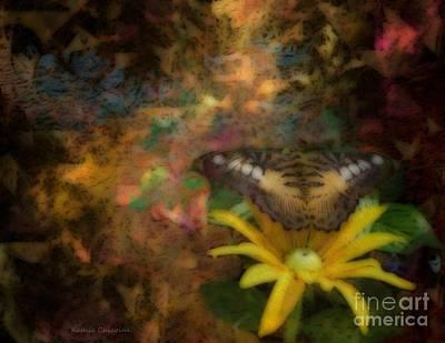 Photograph - Last Light by Kathie Chicoine