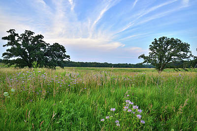 Photograph - Last Light On Silver Creek Prairie by Ray Mathis