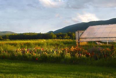 Photograph - Last Light On The Greenhouse by Wayne King