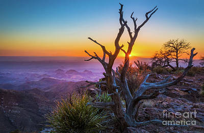 Photograph - Last Light On The South Rim by Inge Johnsson